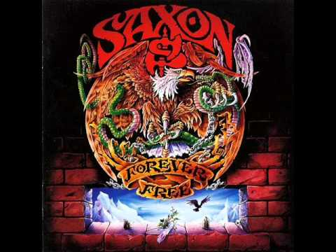 Saxon: Baptism Of Fire – The Collection 1991-2009   Demon