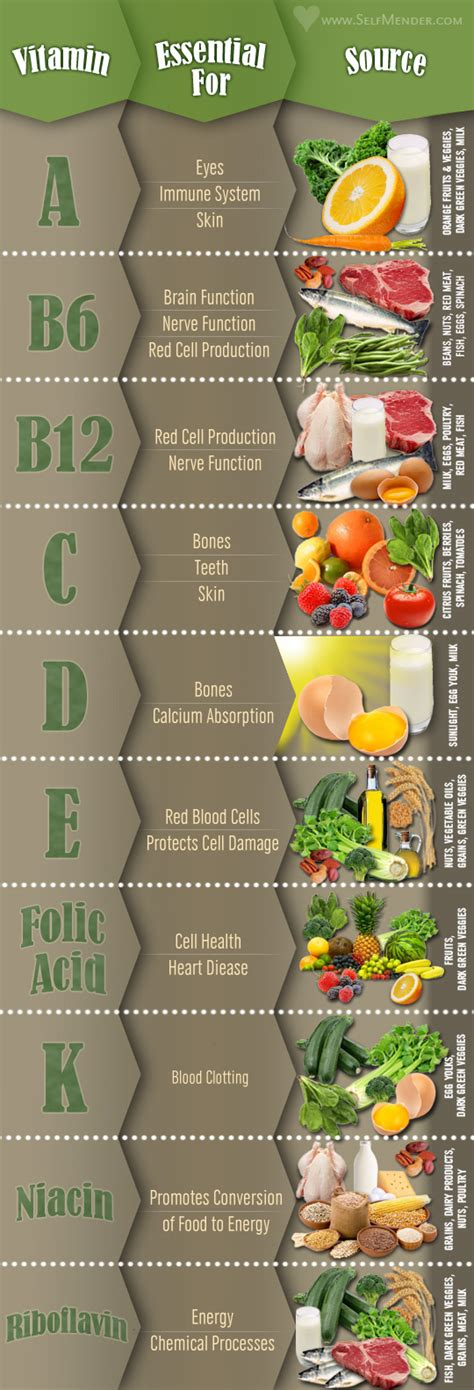 Vitamins and Their Food Sources - Infographics by Graphs