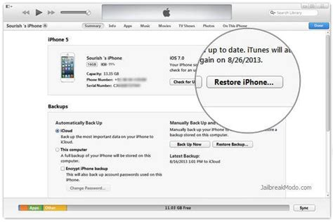 How to Unlock a Locked iPhone without Passcode