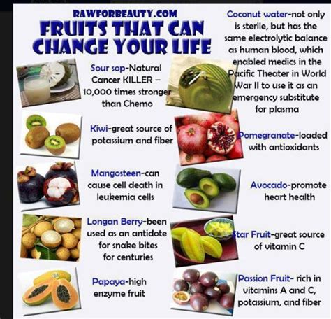 Nutrition   Become Healthy or Extinct!