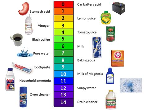 pH Scale and everyday substances on Vimeo