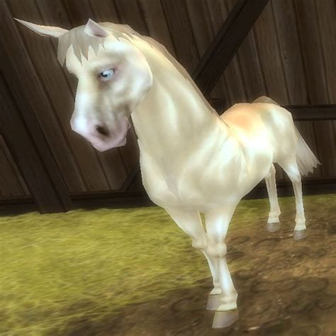 Star Stable Daily : Horse Breeds